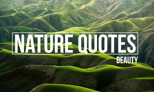 Nature Quotes beauty in Hindi