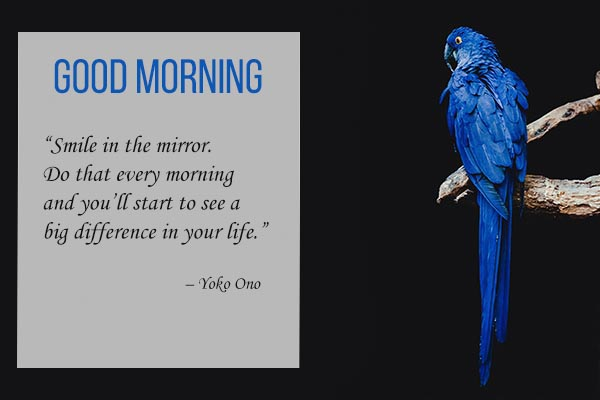 Good Morning Quotes and Images for smile in the mirror