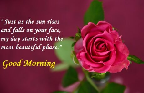Good Morning Wishes and Images for Friends and Everyone