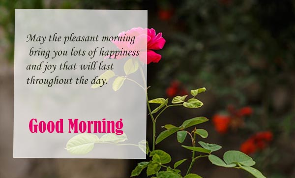 Good Morning Wishes for your happiness life