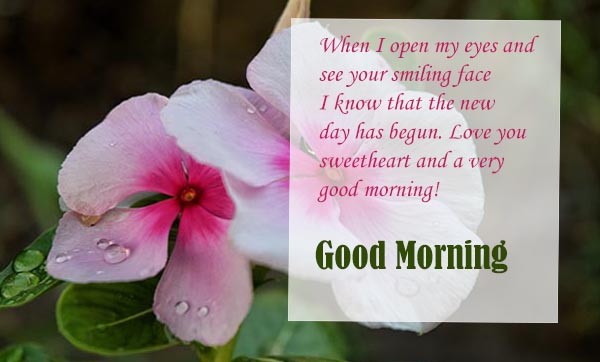 Good Morning wishes to your smiling face
