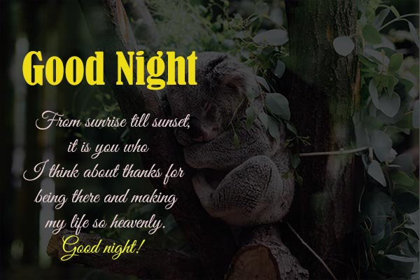 Good Night Sweet Dream Messages for Best Friend