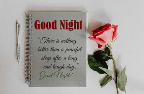 Good Night Wishes and Images for Book Lover