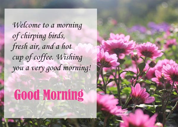 welcome to a good morning to a new day