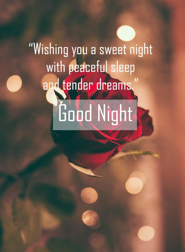 Good Night Msg and Images for cute Girlfriend