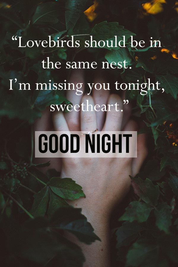 Sweet Good Night Sms and Images for Boyfriend